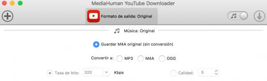 opción audio